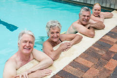 Portrait of swimmers leaning on poolside. High angle view of swimmers leaning on poolside Royalty Free Stock Photo