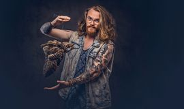 Portrait of a tattoed redhead hipster male with long luxuriant hair and full beard dressed in a t-shirt and jacket holds. A keeps the scarecrow of an owl in a royalty free stock photography