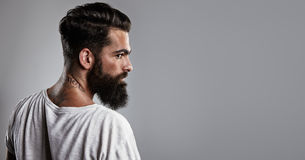 Portrait of a tattooed bearded guy Royalty Free Stock Image