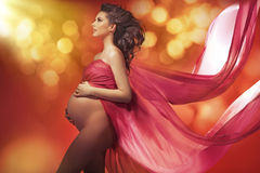 Portrait of the tawny pregnant woman Royalty Free Stock Photo