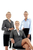 Portrait of a Team of beautiful businesswoman royalty free stock photos