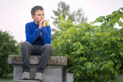 Portrait of a teenage boy in the evening royalty free stock images