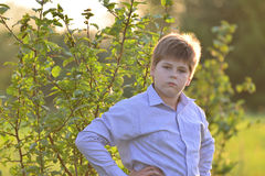Portrait of a teenage boy in the nature at summer Stock Image