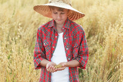 Portrait of teenage farmer boy is checking oat or Avena sativa seeds in cupped palms Stock Photos