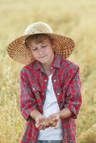 Portrait of teenage farmer boy is checking oat seeds in cupped palms at harvest time field Royalty Free Stock Photos