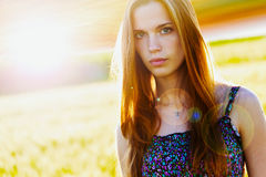 Beautiful girl in a field stock image