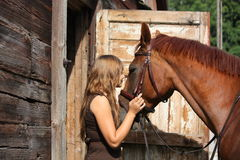 Portrait of teenage girl and chestnut horse near the wooden stab Royalty Free Stock Images