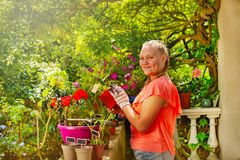 Girl standing on balcony with potted flowers stock photos