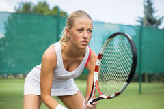Portrait of tennis player on the court Stock Photography
