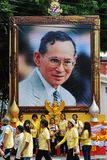 Portrait of Thai King Bhumibol Adulyadej Royalty Free Stock Photos