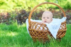 Portrait of a thoughtful baby child sitting in a wicker basket standing on a grass lawn outdoor. Happy childhood concept royalty free stock images