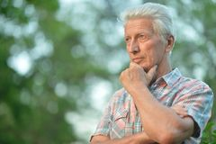 Portrait of thoughtful senior man. With hand on chin   in  park Stock Image