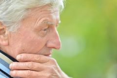 Portrait of thoughtful senior man. In  park Stock Image