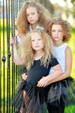 Portrait of a three  beautiful fashion  girls Royalty Free Stock Photos