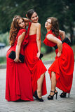 Portrait of a three beautiful girl bridesmaid in royalty free stock photo