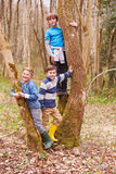 Portrait Of Three Boys Playing Game In Forest Stock Photo