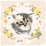 Portrait of three-colored kitten and Butterfly. Royalty Free Stock Image