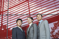 Portrait Of Three Confident Businesspeople Stock Images