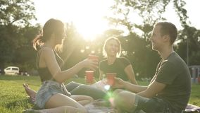 Portrait of three friends hanging out together in the park. One man and two girls with little dog are sitting on the. Green grass in the city park, holding red stock footage