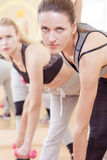Portrait of Three Nice and Attractive Fitwomen Having a Stretching Workout With Barbelles Indoors Together Royalty Free Stock Image
