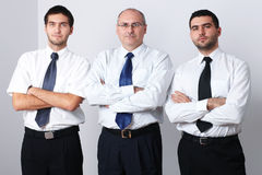 Portrait of three serious businessman Royalty Free Stock Photos
