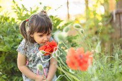 Portrait of a three year old little girl outdoor in  garden. Stock Photo