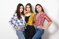 portrait of three young beautiful slender girls women in plaid shirts red, yellow and blue on white background royalty free stock images