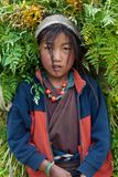 Portrait of Tibetan girl Royalty Free Stock Photo