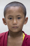 Portrait tibetan young monk in Ladakh. India Stock Images