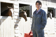 Portrait Tierarzt-der bereitstehenden Pferden-Ställe Stockfotografie