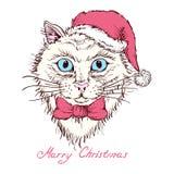Portrait tiré par la main d'un chat dans un chapeau de Noël Photographie stock libre de droits