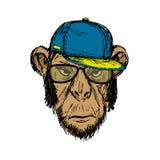Portrait tiré par la main de mode de hippie de singe d'isolement sur le blanc Photos libres de droits