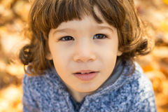 Portrait of toddler boy Stock Images