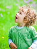 Portrait of toddler boy outdoor Royalty Free Stock Photography