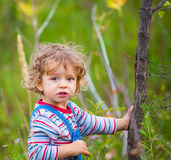 Portrait of toddler boy outdoor Royalty Free Stock Photo