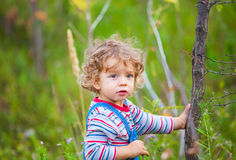 Portrait of toddler boy outdoor Royalty Free Stock Images