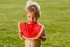One year old baby boy eating watermelon in the garden. Portrait of toddler child outdoors. Rural scene with one year old baby boy eating watermelon slice in the Stock Images