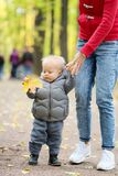 One year old baby boy in autumn park learning to walk with his mother. Portrait of toddler child in warm vest jacket outdoors. One year old baby boy in autumn stock images