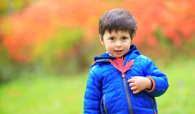 Portrait of a toddler cute boy with a red maple leaf in the hand. Happy child playing with maple leaves in beautiful autumn park on warm sunny fall day royalty free stock photography