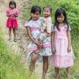 Portrait of Toraja People Stock Images