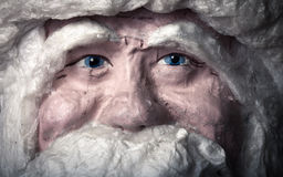 Portrait of toy Santa Claus Royalty Free Stock Photo