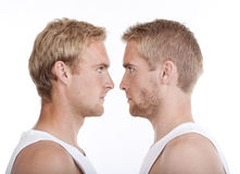 Portrait of twin brothers Stock Images