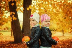 Portrait twin girls holding small pumpkins in hands in autumn park. Royalty Free Stock Image