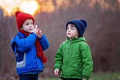 Portrait of two adorable boys, brothers, on a winter day, sunset Stock Image