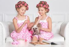 Adorable girls with dog. Portrait of two adorable girls with little dog stock photo