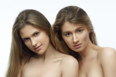 Portrait of two attractive caucasian women blond, studio shot Stock Photos