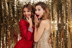 Portrait of two beautiful cheerful women royalty free stock photos
