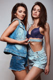 Portrait of two beautiful happy cute brunettes Royalty Free Stock Photo