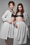 Portrait of two beautiful, sensual brunette models-twins Royalty Free Stock Photos
