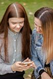 Portrait of two beautiful young girls are looking into the phone, sitting on a bench in the autumn park royalty free stock photos
